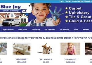 Website Design for Carpet Cleaning Companies