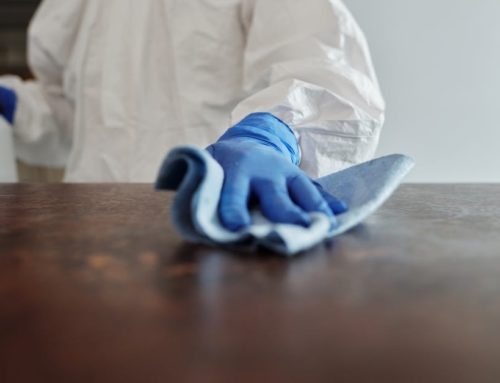 Top 4 Essential Reasons You Need a House Cleaner This Upcoming Fall Season